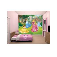 Walltastic Walltastic Princess Wall Murals | Very.co.uk Part 96