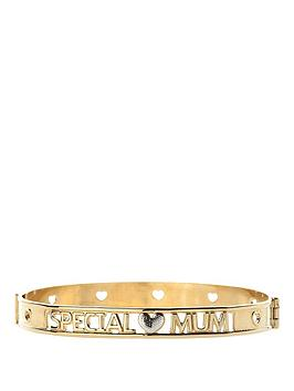 love-gold-9-carat-yellow-rolled-gold-two-tone-special-mum-hinged-bangle