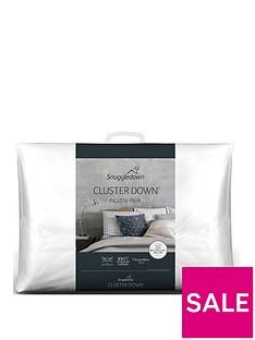 snuggledown-of-norway-clusterdownnbsppair-pillows