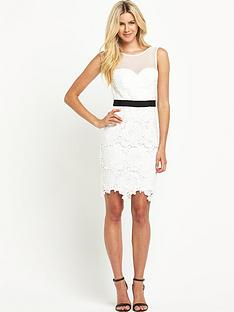 definitions-definitions-crochet-lace-pencil-dress