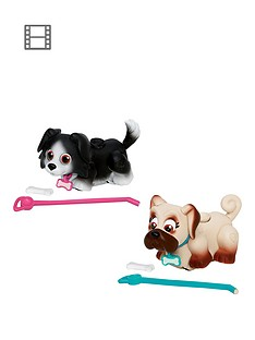pet-parade-twin-puppy-pack-border-collie-and-pug