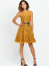 Myleene Lace Dress with Full Skirt