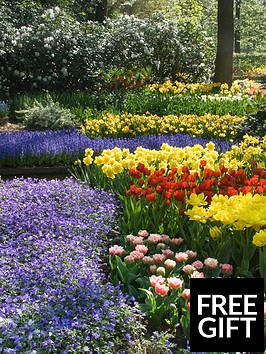 thompson-morgan-6-months-of-colour-collection-100-bulbs