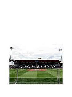 virgin-experience-days-fulham-fc-stadium-tour-for-two