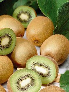 thompson-morgan-kiwi-039jenny039-1x-2-litre-potted-kiwi-plant