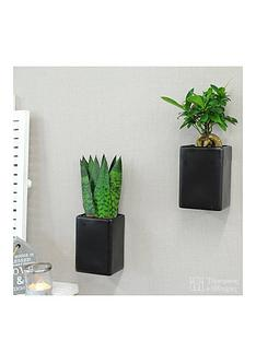 thompson-morgan-black-wall-pots-with-easy-care-plants-set-of-2