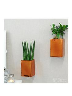 thompson-morgan-copper-wall-pots-with-easy-care-plants-set-of-2