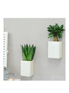 thompson-morgan-white-wall-pots-with-easy-care-plants-set-of-2