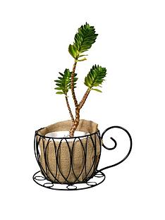 curly-wire-teacup-planter