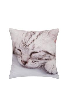 kitten-gifting-cushion-30-x-30cm