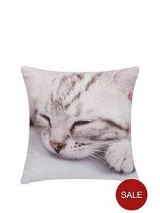 kitten-gifting-cushion-30-x-30cm