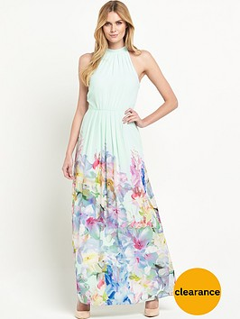 ted-baker-hanging-gardens-border-maxi