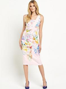 ted-baker-hanging-gardens-border-dress