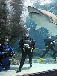 virgin-experience-days-shark-diving-for-one-at-the-blue-planet-aquarium-cheshire