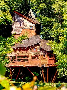 virgin-experience-days-treehouse-lunch-at-alnwick-gardens-and-b