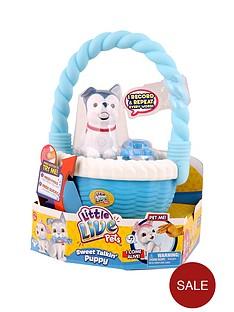 little-live-pets-little-live-pets-pet-and-basket-bone-go