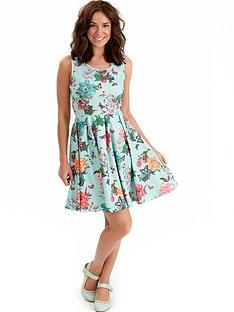 joe-browns-joe-browns-sunset-skater-dress