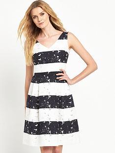 phase-eight-lace-stripe-dress