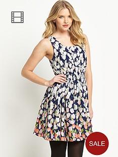 joe-browns-painted-tulip-dress