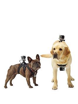gopro-fetch-dog-harness