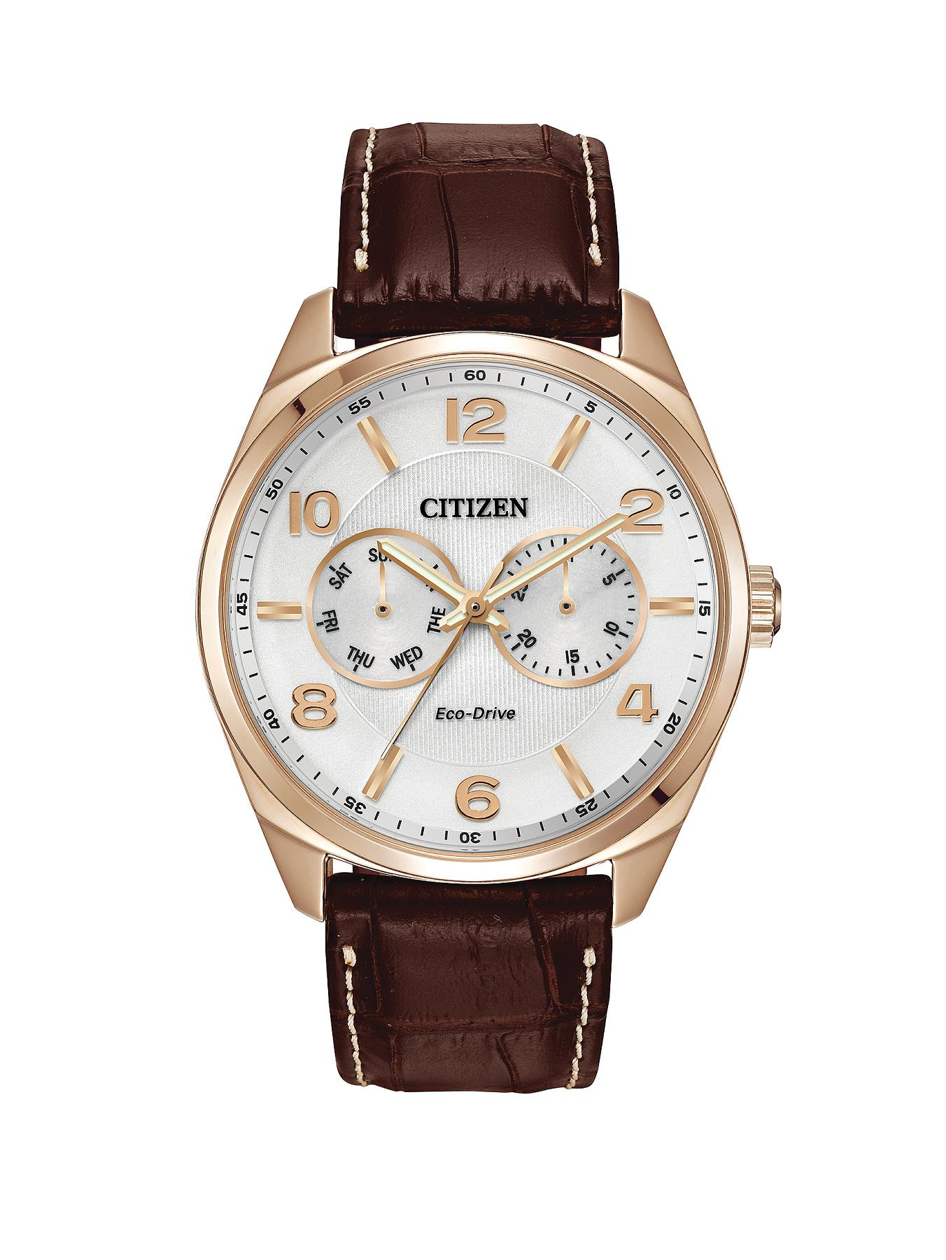 Citizen Eco-Drive WR100 Day-Date Strap Mens Watch