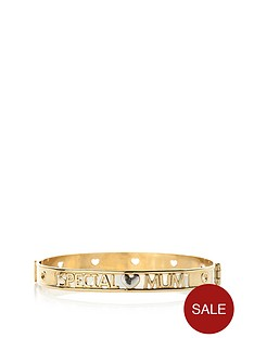 love-gold-9-carat-rolled-gold-two-tone-family-bangle