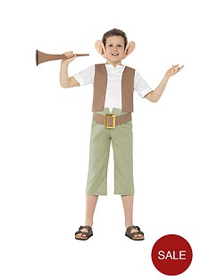 roald-dahl-bfg-childs-costume
