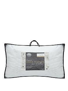 catherine-lansfield-signature-duck-feather-pillow-pack-of-2