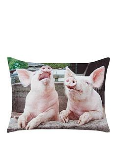 pigs-velvet-cushion
