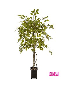 real-touch-fiscus-tree-in-pot