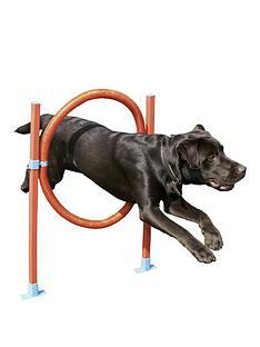 rosewood-agility-range-for-dogs-hoop-jump