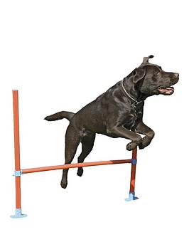 rosewood-agility-range-for-dogs-hurdle