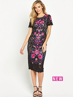 oasis-embroidered-lace-pencil-dressnbsp