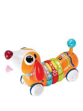 winfun-rc-rainbow-pup