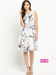 phase-eight-phase-eight-tula-floral-dress