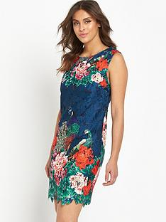 joe-browns-perfect-peacock-lace-dress