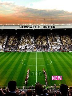 virgin-experience-days-newcastle-united-family-stadium-tour