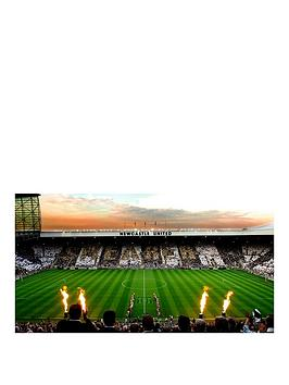 virgin-experience-days-newcastle-united-stadium-tour-for-one-child