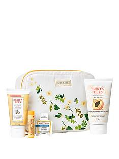 burts-bees-bag-of-treats-gift-set