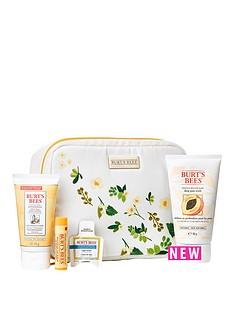 burts-bees-bag-of-treats-gift-set