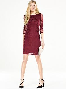 wallis-embroidered-lace-shift-dress-berry