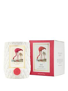 ted-baker-miami-candle-ndash-star-apple-and-passion-fruit