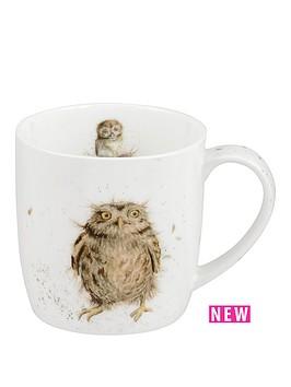 portmeirion-wrendale-what-a-hoot-mug-owl-by-royal-worcester-single-mug
