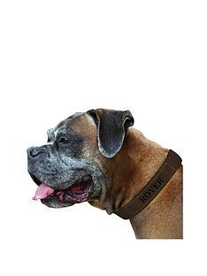 personalised-brown-dog-collar