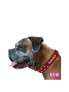 personalised-polka-dog-collar