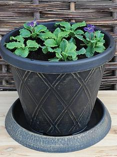 thompson-morgan-small-patio-pot-33cm-amp-saucer-x-2-10-packets-of-seeds