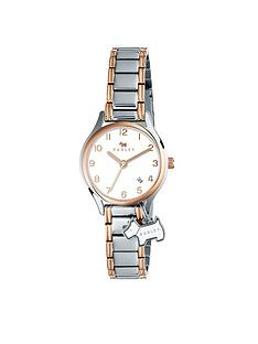 radley-radley-two-tone-dog-charm-dial-stainless-steel-ladies-watch
