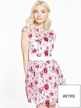 little-mistress-petite-premium-embroidered-skater-dress