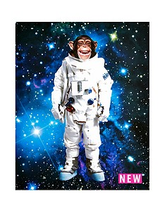 arthouse-space-monkey-led-canvas