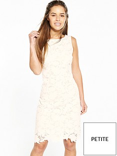wallis-petite-leaf-lace-shift-dress